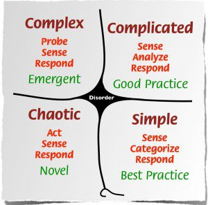 Cynefin_framework_Feb_2011-300x296.jpeg