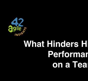 What_Hinders_High_Performance_on_a_Team.png