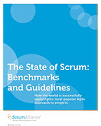 State of Scrum 2013