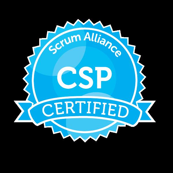 CSP seal