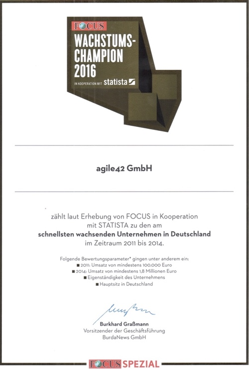 Certificate from Focus special issue